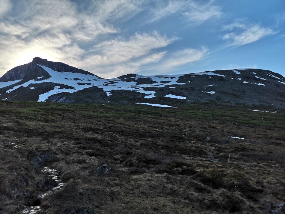 24.06.2020: Fra Horndalen mot Vasstindbu. Mye snø siste 2-300 høydemetrene. Snøen bærer godt, men enkelte steder kan man gå gjennom.