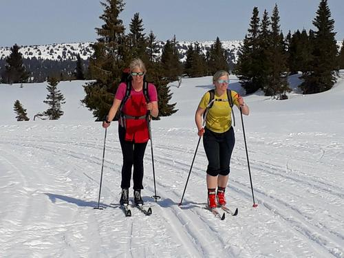 På ski fra Holmsetra