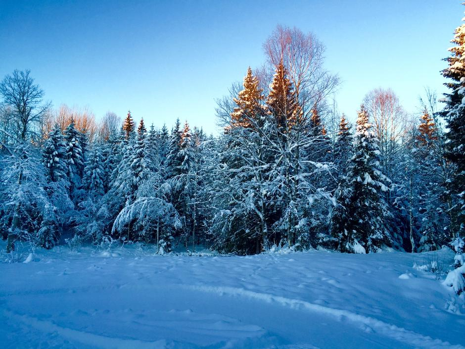 Vinter på Nordre Løkenseter