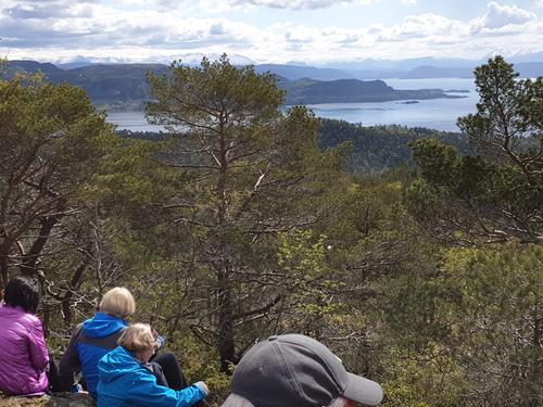 Utsikt fra Borgafjellet