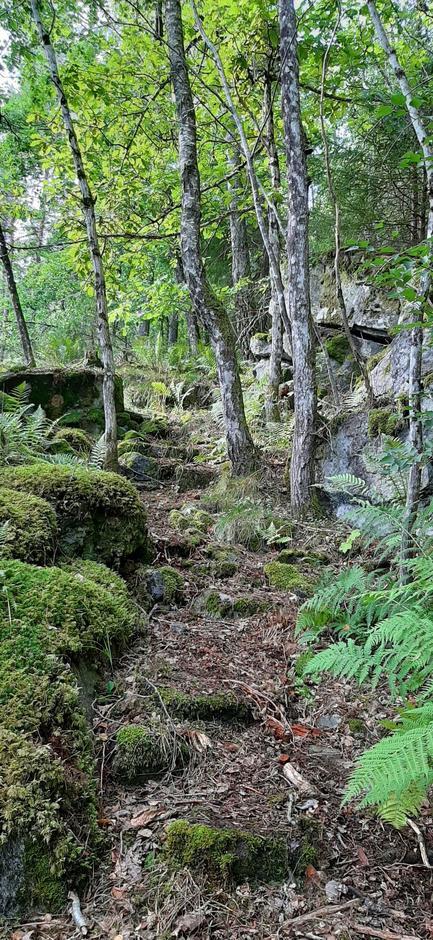 Stien over Eikenes: Her kan vi se at den er bygd opp for bruk til frakt med hest i gamle dager.