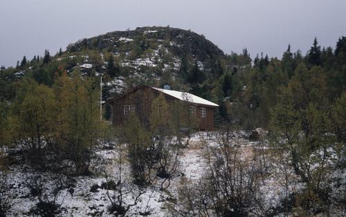 Turreferat: Kvipt - Granbustøyl 11.-12. oktober 2014