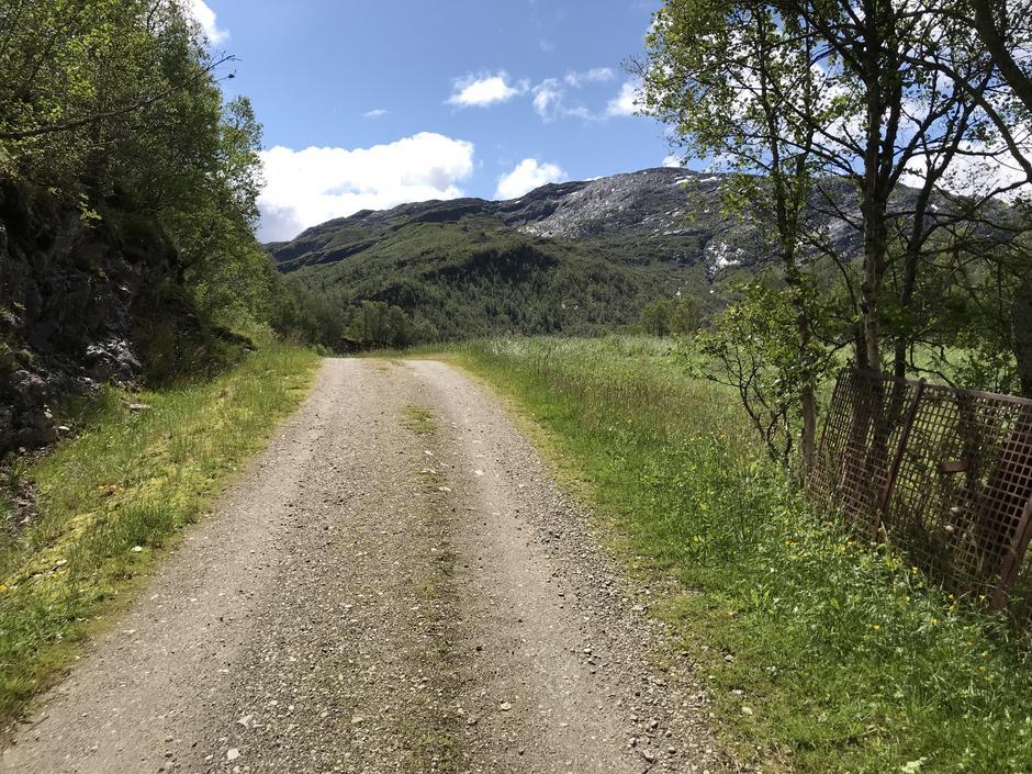 Følg grusveien noen hundre meter.