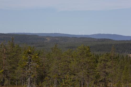 Finnskogleden over Kjølberget