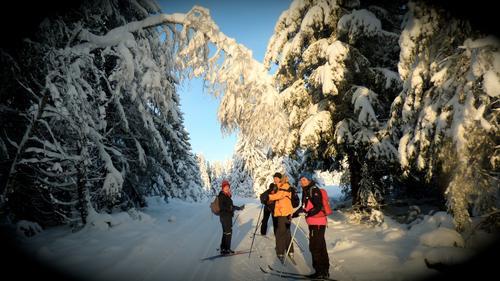 Tur til Vollkoia/Blåmyrkoia 13.januar 2016.