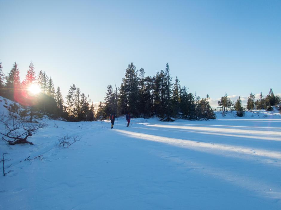 Lav desembersol, på vei hjem søndag.