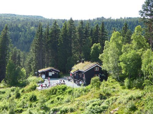 Grønlias oase.