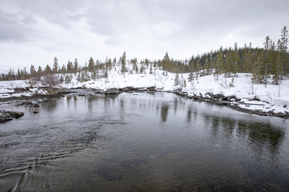 Elva hvor Gåsvatnet renner ut