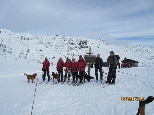 Skitur Dalseter-Bingsbua-Hestådalen-Dalseter