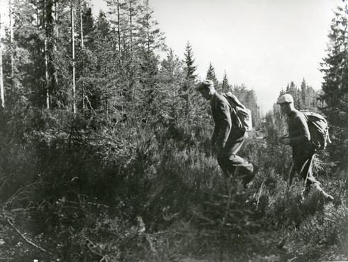 Norske flyktninger under siste verdenskrig