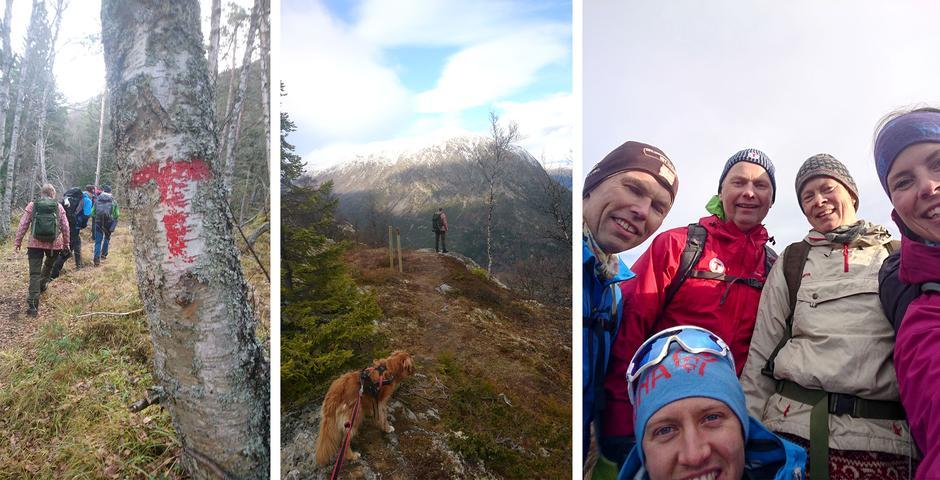 Vi besteg nærmere 700 høydemetere på turen. Vi fikk nydelig utsikt over Lom da vi kom over tregrensa. Fem glade turdeltagere på Læshøe.