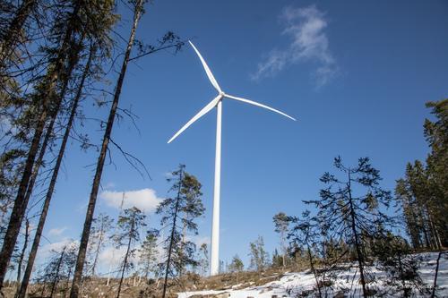 51 frilufts- og naturvernforeninger ut mot vindkraft i Sørøst-Norge