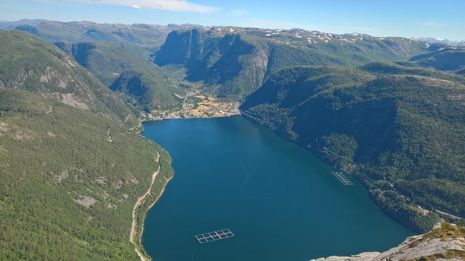 Utsikt frå Fløyen innover Vadheimsfjorden