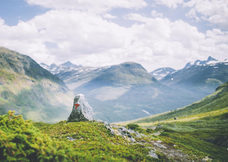 Fjellheimen venter – bli med oss på tur i sommer!