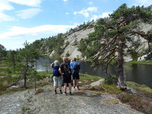 Utsyn mot Bergtjønn på veg til Velausfjell.
