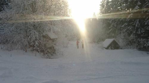 Flott vintersøndag på Lauvesetra