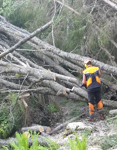 Slike vaser av nedfallstrær over stiene er det sjelden vi ser, men i år har det skjedd flere steder.
