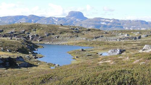 Hårteigen sett fra stien mellom Hadlaskard og Stavalid