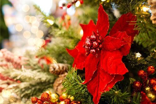 Førjulsfest m/julemiddag 6. desember