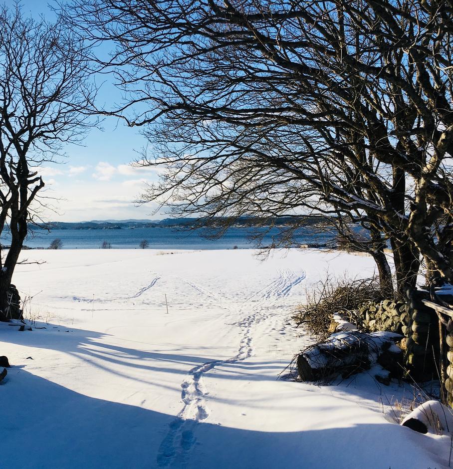 Skiføre på jordene - bli med på en guidet runde med på ski på beina!