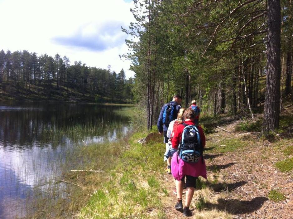 Bergesjøen i Elverum