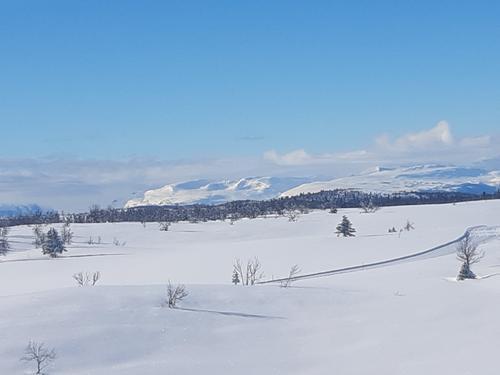Utsikt mot fjell i Vang sett frå Saursløypa