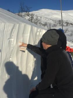 Fastere snø over tregrensa gode forhold for fjellski