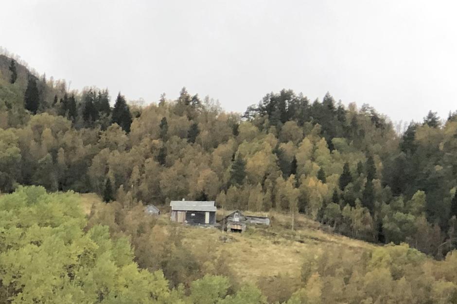 Røyrlidi