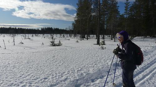 Ski- og fottur ved Vollkoia til Blåmyrkoia 19.02.2020.