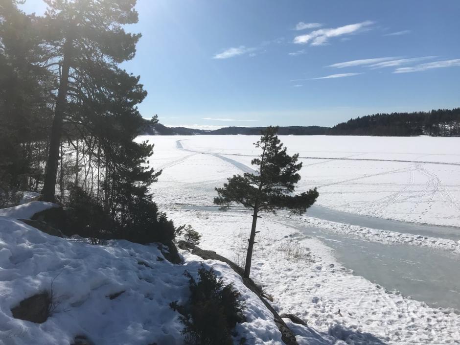 Goksjø i vinterstemning
