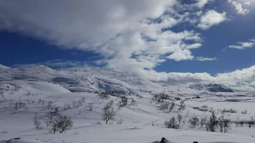 18. Mars på vei ned fra Storevatn 800 moh