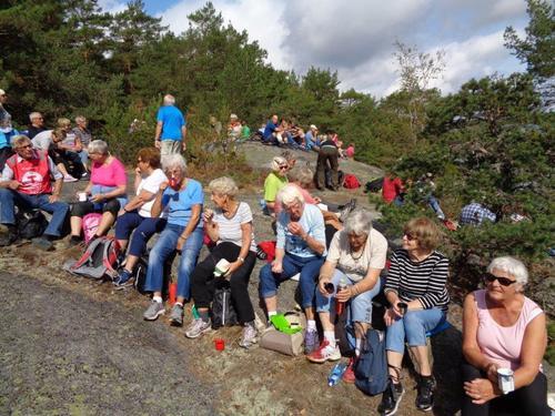 Seniorgruppa: Brøtsø rundt 15.august