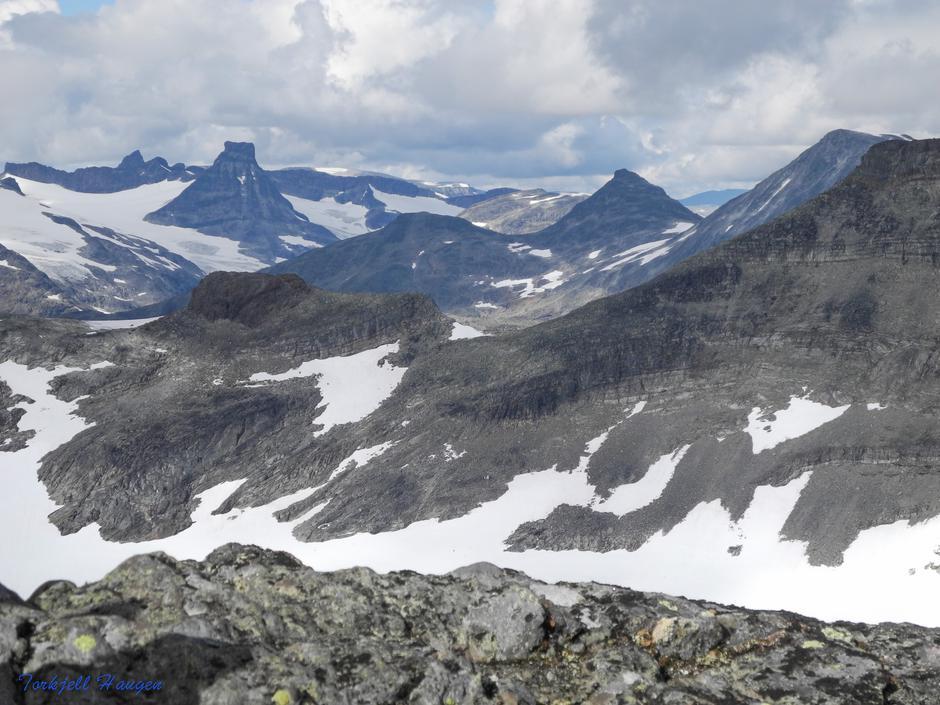 Storbjørn og Stetind