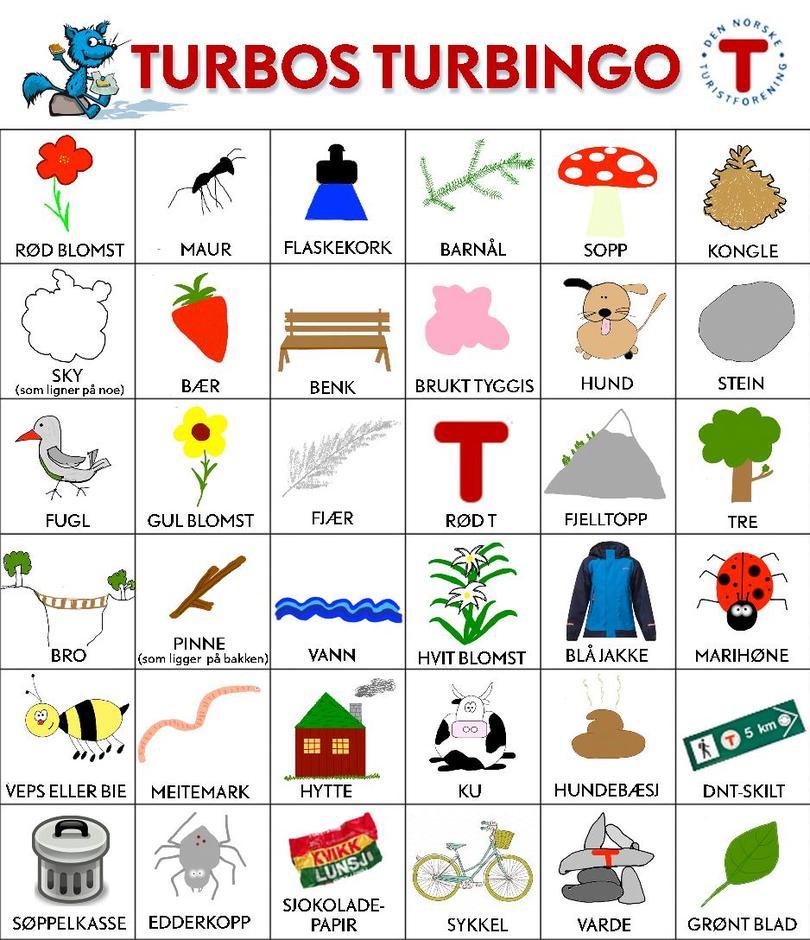 Turbingo!