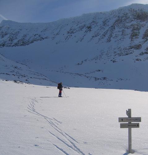 På ski midt på Dovrefjell