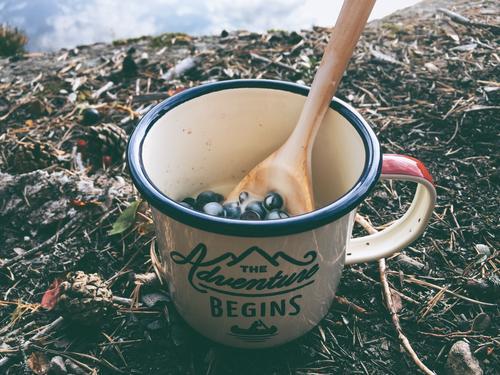 DNT ung, natt i naturen. Skogen er fylt med deilige bær, så det ble selvplukka blåbær til frokost. Mums mums.