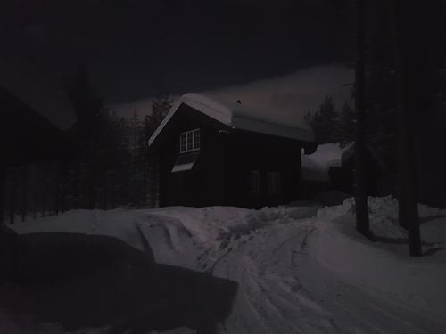 Dugnader i Pråmvika i januar