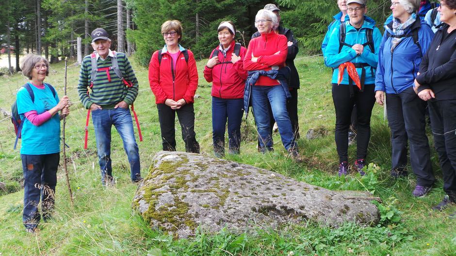 Høstsesongen for Veteranan Innherred Turlag startet onsdag 24. august med tur på den nye Nessestien. I vakkert høstvær og blant gule kornåkre var 40 personer med på den 9 km lange stien på Levanger-Nesset.