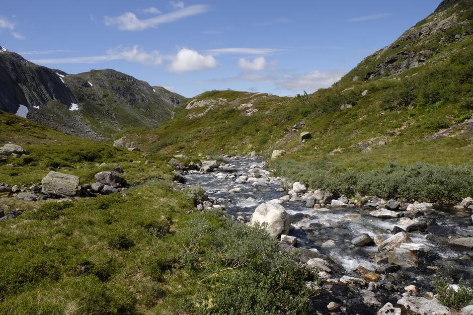 Langs elven som renner ned mot Vesetvatnet.