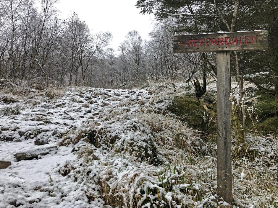 Ta vegen opp til venstre ved Reppadalen skiltet.