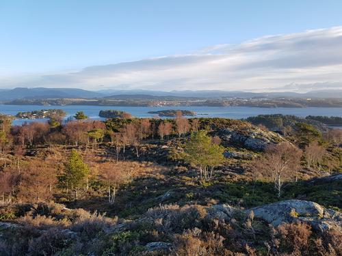 Litt av utsikta frå Varden på Tyssøyna