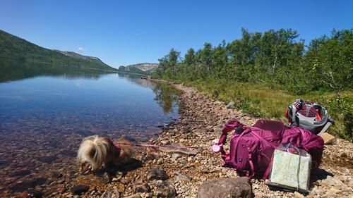 På tur i Telemarks urørte natur!
