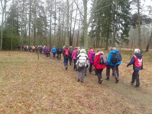 Seniorgruppa har vandret i Essoskogen