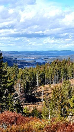 Utsikt fra Pengeberget