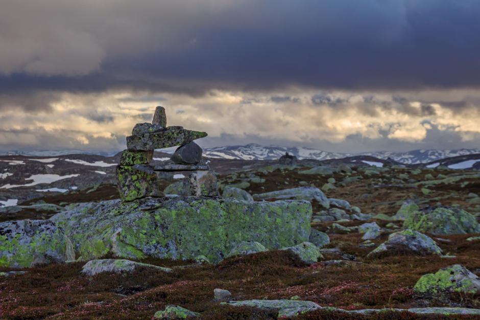 Toppen av Holtehei sørøst for Stavskarhytta 13.6. Urddalsknuten bak i bildet.