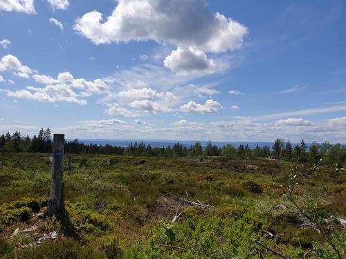 Utsikt fra Haukåsen