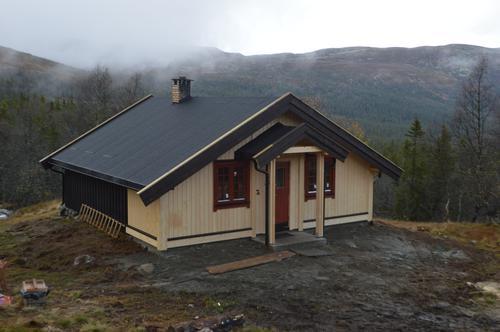 Storekrakkoia - 889 moh