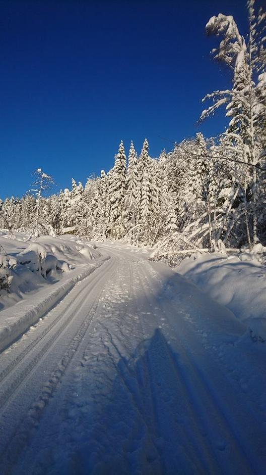 Fantastiske vinterforhold er gode skiløyper
