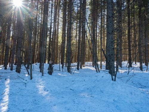 Siste sjanse til vintertur