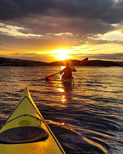 Kjempefin padletur i solnedgang til Håøya i begynnelsen av juni. Supert selskap i Oslofjorden!